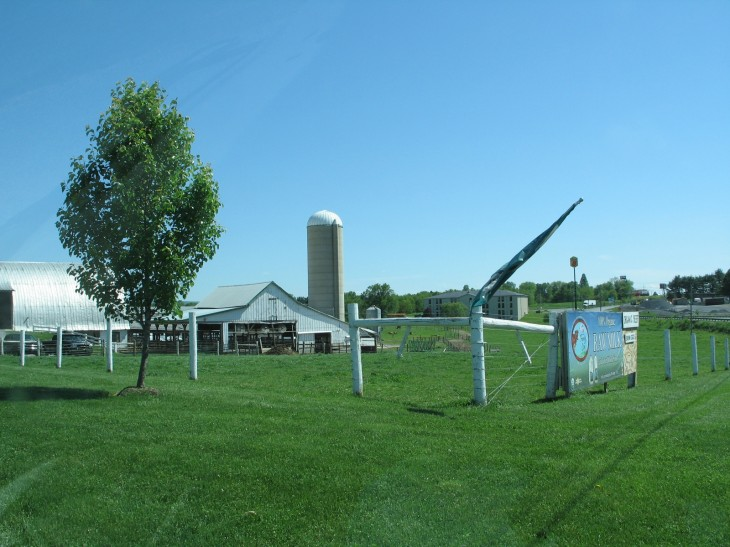 The Best of the Best, Local Organic Farming near Gettysburg Pennsylvania